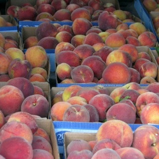 So many peaches!