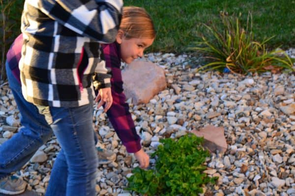 Outdoor Living Ideas: Bringing Children Outside