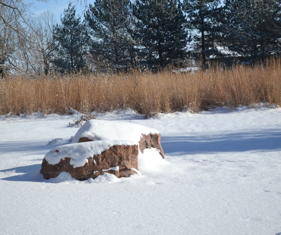 Snow Covered Rock