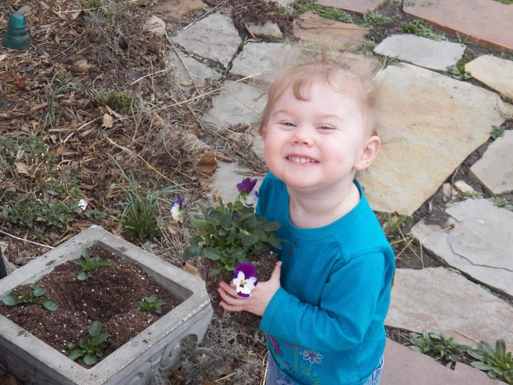 Planting Flowers with Children