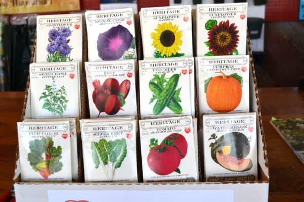 Time to Start Garden Seed Indoors
