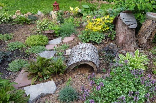 Plants for Miniature Gardens