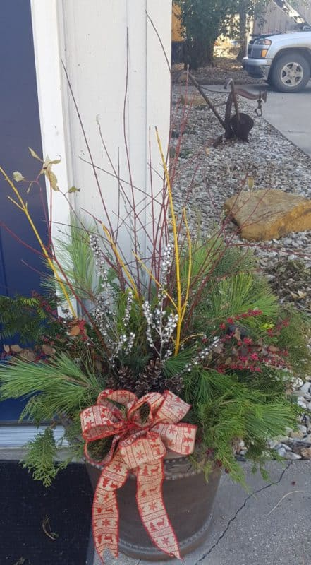 Using Native Plants to Make Holiday Containers