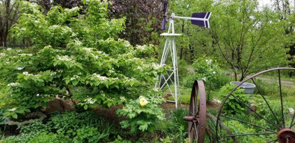 Kansas Gardener's Garden April-May