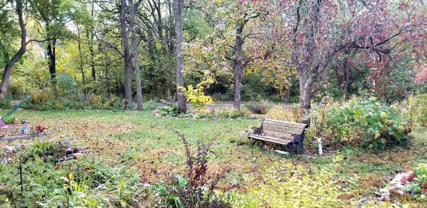 The Kansas Gardener's Garden: October through December