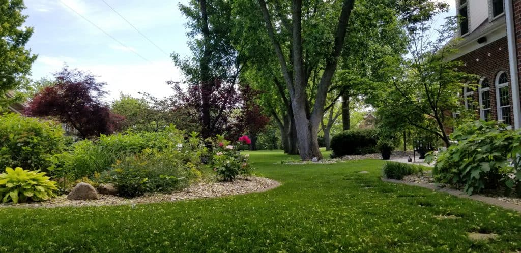 A relaxing landscape