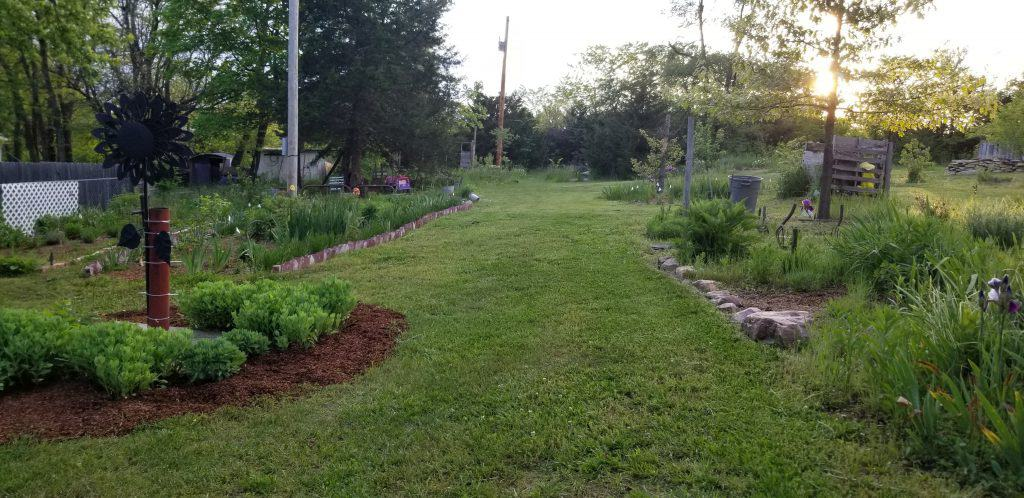 My backyard gardens
