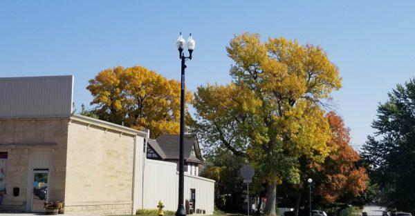 Replacing the Urban Tree Canopy – Post EAB
