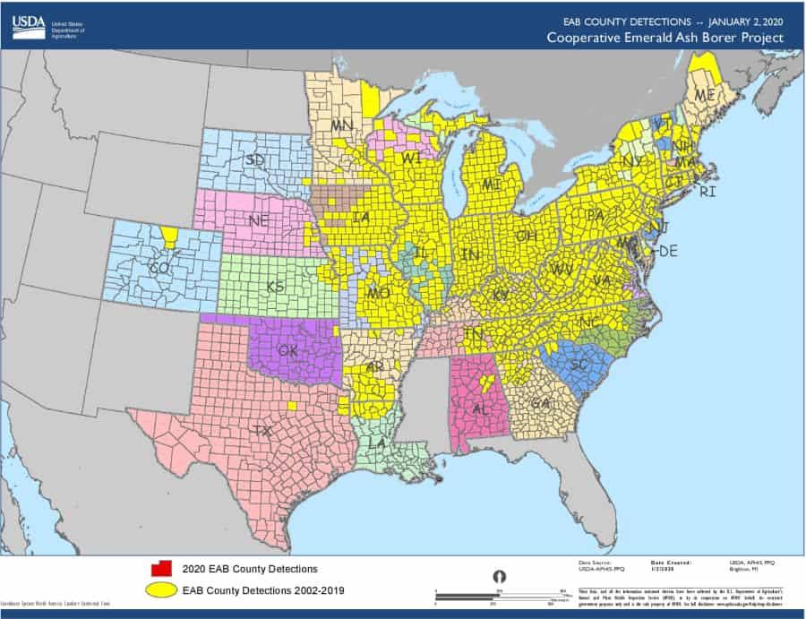 county locations of emerald ash borer