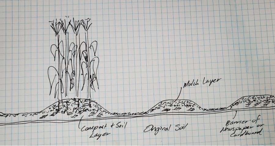 drawing of permanent beds